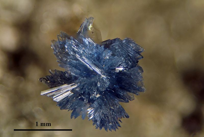 Vaixite from Bolivia