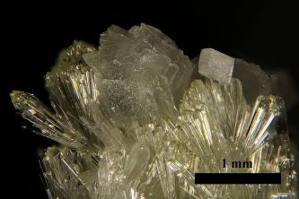 Photograph of calcite on vesunvianite