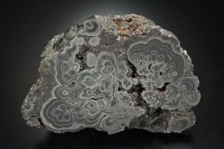 Pyrolusite Bartow Co TL2010-30-15 - by JGray